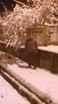 Kışlaçay Köyü nde Kar Kalınlığı 5 Cm