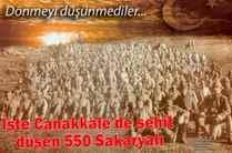 İşte Çanakkale'de şehit düşen 550 Sakaryalı kahraman