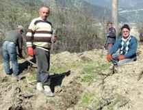 Orman İşletmesi 1500 geçici işçi alacak