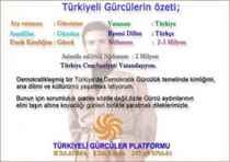 Türkiyeli Gürcülerin özeti