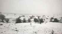Karagöl'de Kar kalınlığı 10 cm 'yi Buldu..