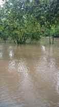 Kışlaçay a 19 Günde 148.7 kilogram yağış düştü