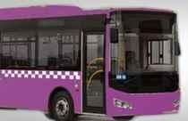 Vatandaş 'otobüsler mor renk olsun' dedi