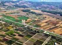 Baba mirası tarım alanı için son 3 ay