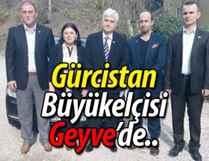Gürcistan Büyükelçisi Geyve'de YENİHABER