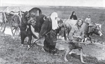 1944 Büyük Sürgün Kafkasya Göçü Filmi