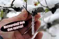 Meteroloji Uyardı Marmara'da zirai don uyarısı!