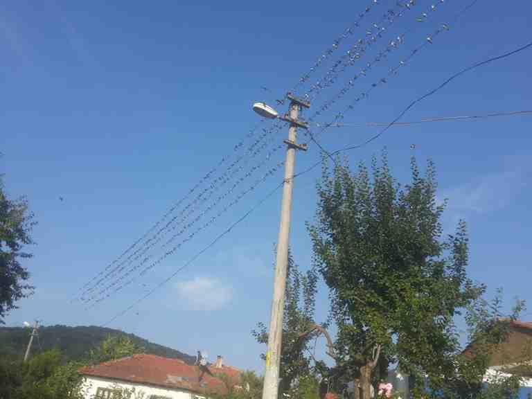 O Tarihte Kışlaçay Mahallesinde Elektrik Kesintisi Var!!