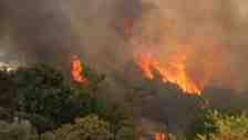 Geyve ilçesi Kulfallar Mahallesinde orman yangını çıktı.