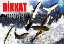 Balık tutkunları bu haber sizin için! Bu tarihlere dikkat!