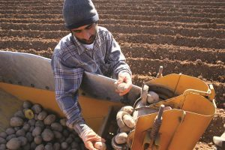 Genç çiftçi desteği için son gün 30 Nisan!!