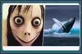 Momo Ve Mavi Balina İçin Bakanlık Harekete Geçti!
