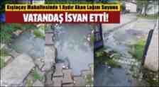 Kışlaçay Mahallesinde Atık Suyu Şikayet İçin Dilekçe Verildi!