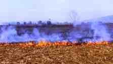 Anız Yangınları Toprak Verimliliğini Düşürür!