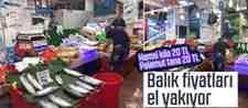 Balık Sezonu Açıldı Ama Fiyatlar Bir Türlü Düşmüyor!