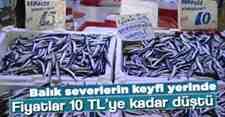 Vatandaş Balık Fiyatlardan Memnun 10 TL,ye Satılıyor!