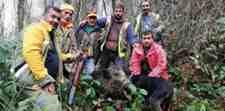 Kışlaçay Mahallesinde Domuz Avı İçin Toplandılar!!