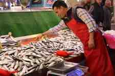 Katlı Pazarda Balık  Fiyatları Cep Yakıyor!