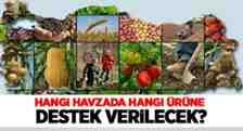 2020 Yılından Sakarya'da Bu Ürünler Desteklenecek!