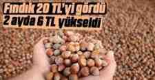 Fındık'da Yüzler Gülüyor 20 TL'yi Gördü….
