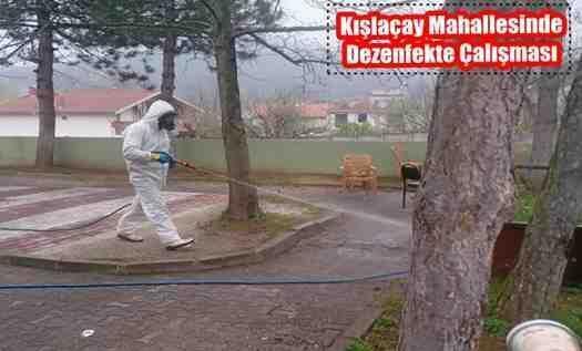 Arifiye Belediyesi Kışlaçay Mahallesinde Dezenfekte Çalışması Yaptı!