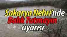 Dikkat Sakarya Nehri'nde Balık Tutmayın Uyarısı!