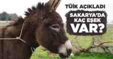 Türkiye İstatistik Kurumu Sakarya'da hayvan üretim istatistiklerini yayımladı.