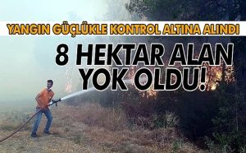 Taraklı'daki Yangın Güçlükle Kontrol Altına Alındı!