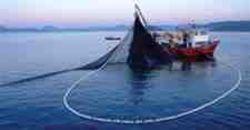 Hasret sona eriyor, balıkçıların gözü 1 Eylül'de.