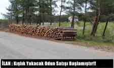 İLAN : Kışlık Yakacak Odun Satışı Başlamıştır!!