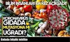 Gıdada büyük tehlike.