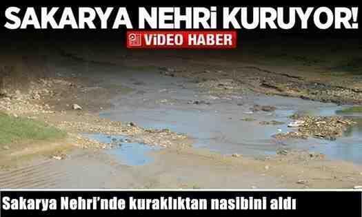 Sakarya Nehri'de kuraklıktan nasibini aldı! (Video)