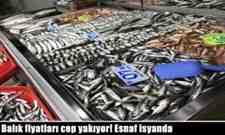 Balık fiyatları cep yakıyor! Esnaf isyanda