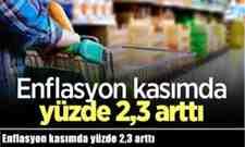 Kasım'da enflasyon yüzde 2,3 arttı