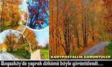 Boğazköy'de yaprak dökümü böyle görüntülendi….