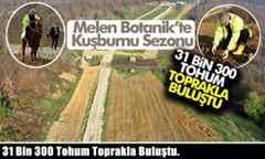 31 Bin 300 Tohum Toprakla Buluştu.