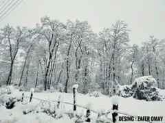 Beyaz Rüya Kışlaçay / Kordebi