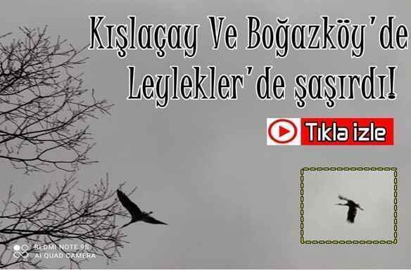 Kışlaçay Ve Boğazköy'de Leylekler'de şaşırdı!Video