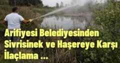 Arifiyesi Belediyesinden Sivrisinek ve Haşereye Karşı İlaçlama.