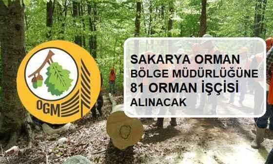 Sakarya Orman Bölge Müdürlüğü'ne 81 Kişi Alınacak