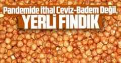 Pandemide İthal Ceviz-Badem Değil, Yerli Fındık.