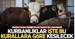 Kurban kesim tebliği Resmi Gazete'de yayımlandı.