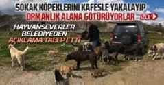 Arifiye Belediyesin'den açıklama yapılsın talebi..
