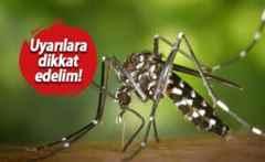 Asya kaplan sivrisineği için ürküten uyarı.