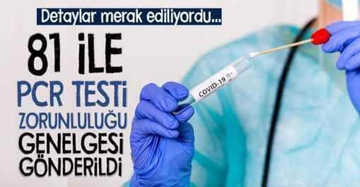 81 İle PCR Testi Zorunluluğu Genelgesi Gönderildi..