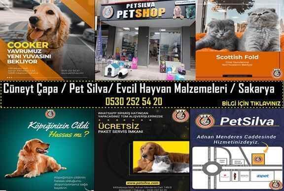 Cüneyt Çapa / Pet Silva/ Evcil Hayvan Malzemeleri / Sakarya