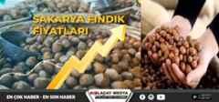 Sakarya'da fındık fiyatlarında işte son durum?