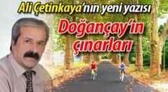 """Ali Çetinkaya'dan """"Doğançay'ın çınarları"""" yazısı…"""