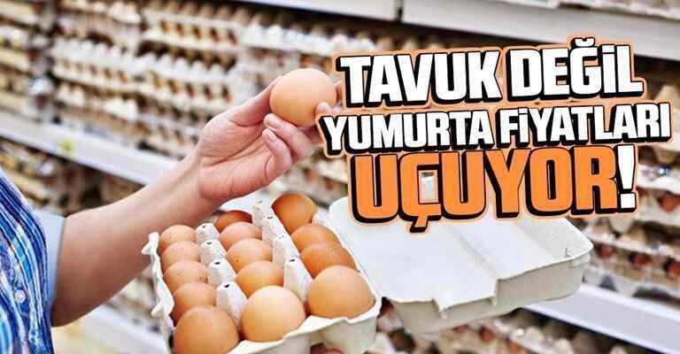 Yumurta fiyatları son günlerde tırmanışa geçti…